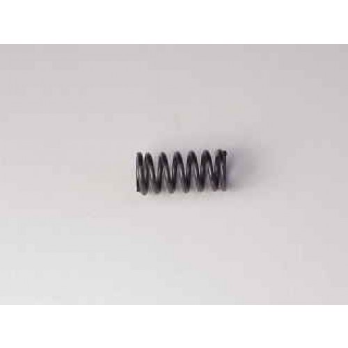 Lee Parts Spring_.24_X_45_Long