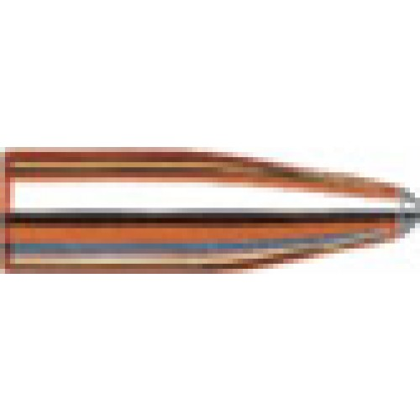 Hornady 20-204 45g SP x100